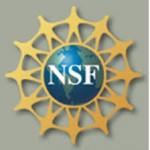 Logo1NSF