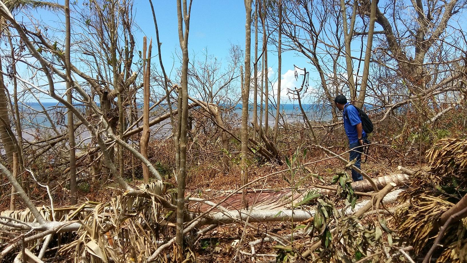cyclone damage in SAVA madagascar