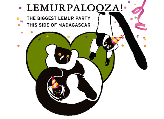 lemurpalooza for website solil