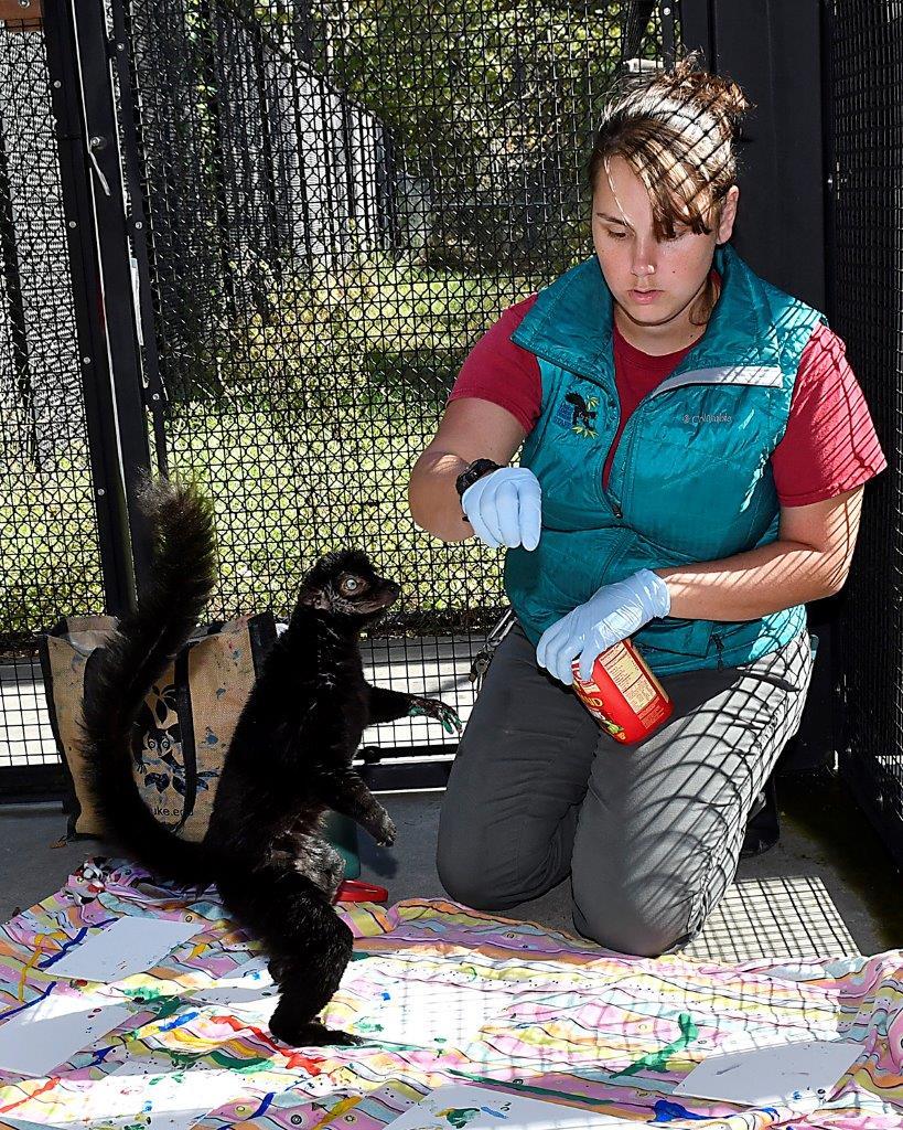 _DSC3949_emf 7157 7237 Danielle lynch painting with lemurs