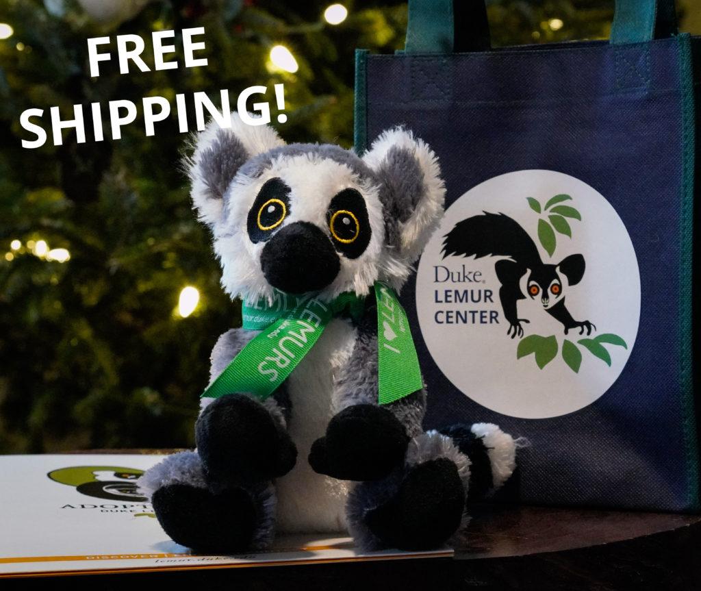 Plush ring-tailed lemur and adoption packet