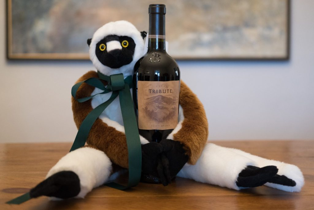sifaka stuffed animal for sale