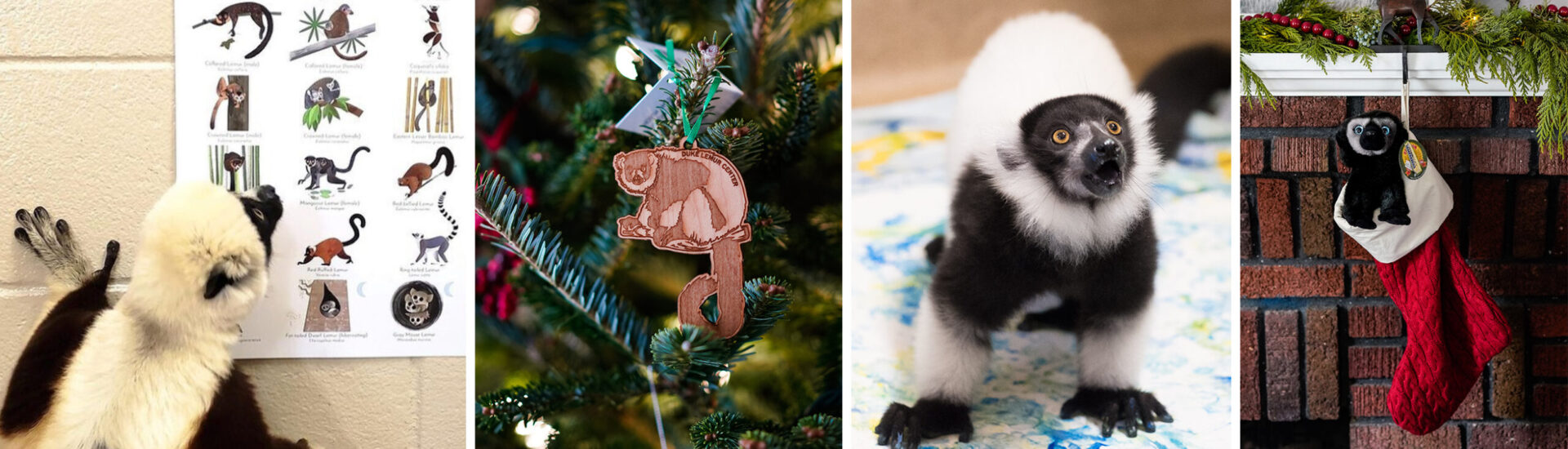 collage with poster, ornament, lemur painting, and stuffed animal in a christmas stocking