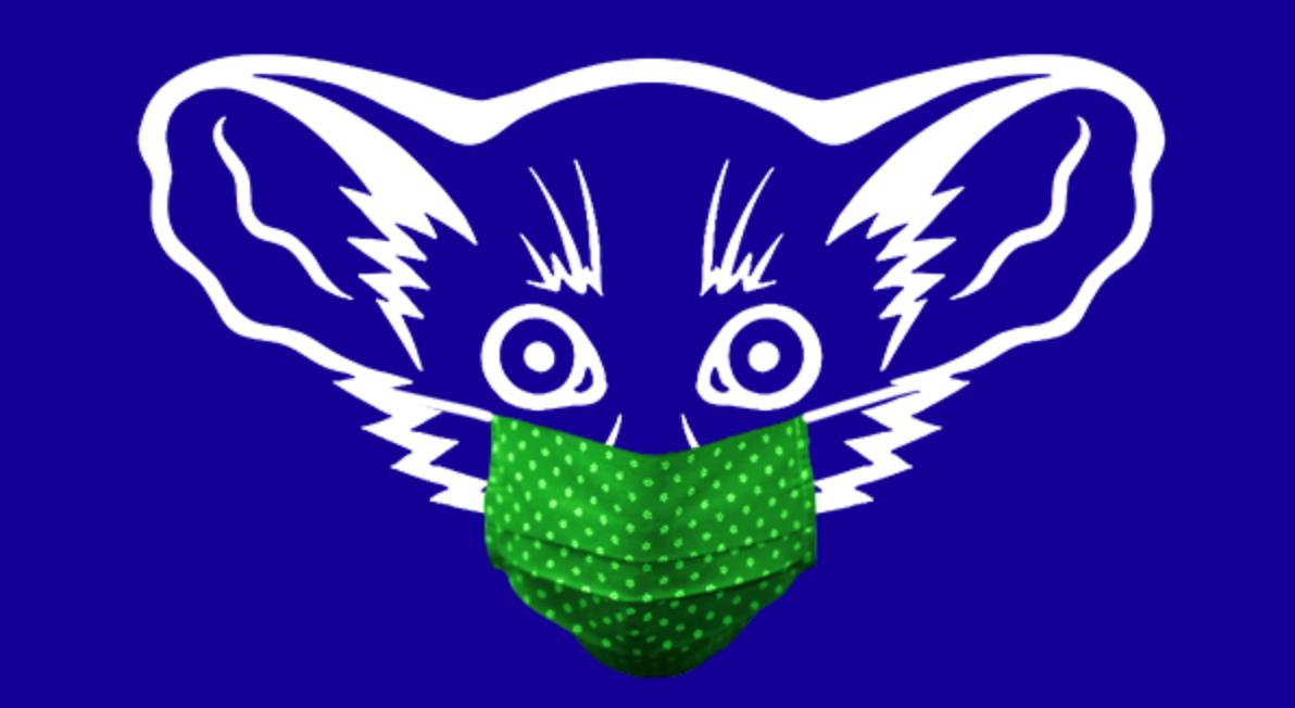 Cartoon of an aye-aye lemur wearing a mask